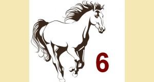 galop 6