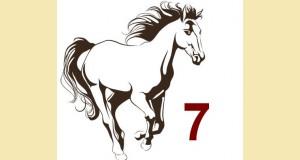 galop 7