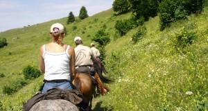 randonnée à cheval par Lily rose