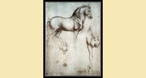 Etude d'un cheval au crayon, de Léonard de Vinci.