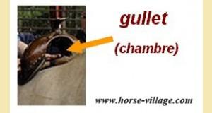 gullet1-d9bd3.jpg