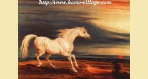 Marengo, cheval de Napoleon Bonaparte