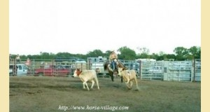 ranchdoc1-b53bb.jpg