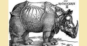 Rhinoceros Unicornus, ou rhinocéros indien, par Albrecht Dürer (1515)