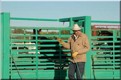 prisonnier cowboy
