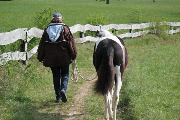 Stephanie baladant son cheval en longe