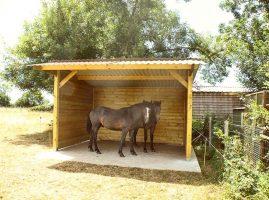 abri pour cheval simple