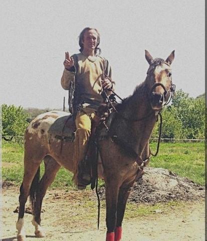 Appaloosa Nez Percé (Nez Percé Horse)