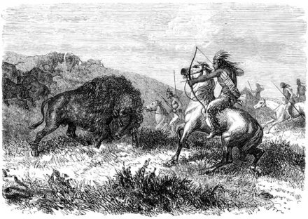 Chasse au bison